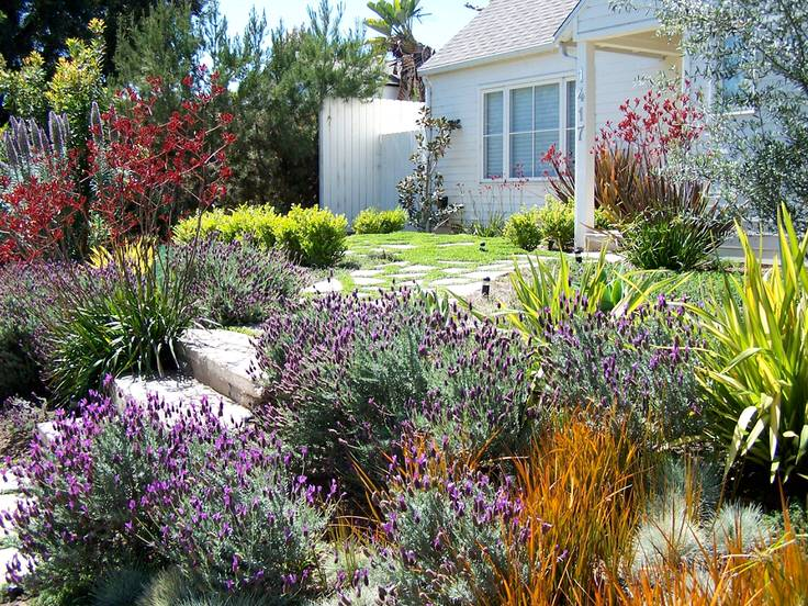 This is a great alternative to grass that also makes for the most charming  front yard on the block! - Alternatives To Grass : Front Yard Landscaping Ideas The Garden Glove