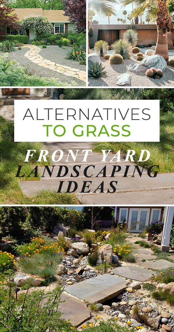 Alternatives To Grass : Front Yard Landscaping Ideas