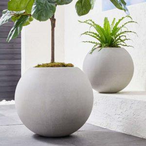 Best Places to Buy Concrete Planters Pots Online