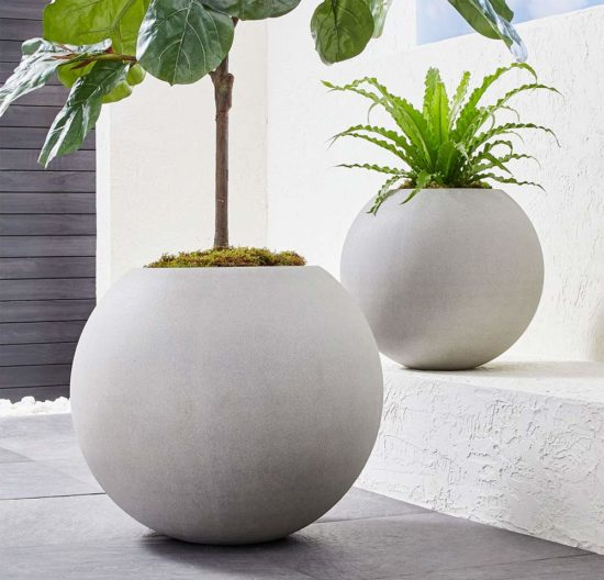 Best Places to Buy Concrete Planters Pots Online