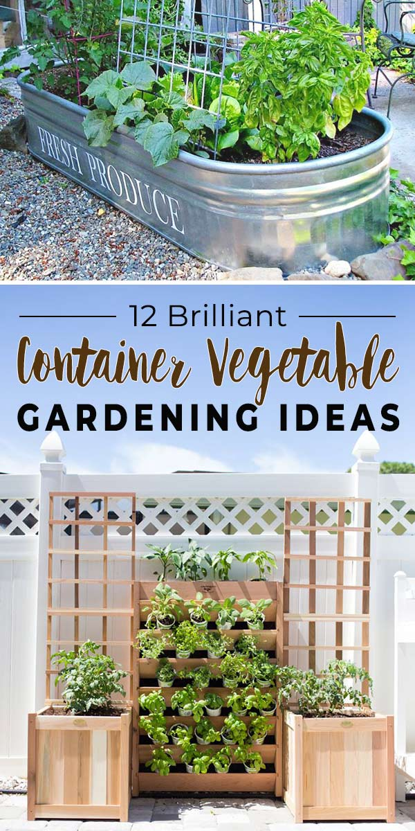 12 Brilliant Container Vegetable Gardening Ideas The Garden Glove