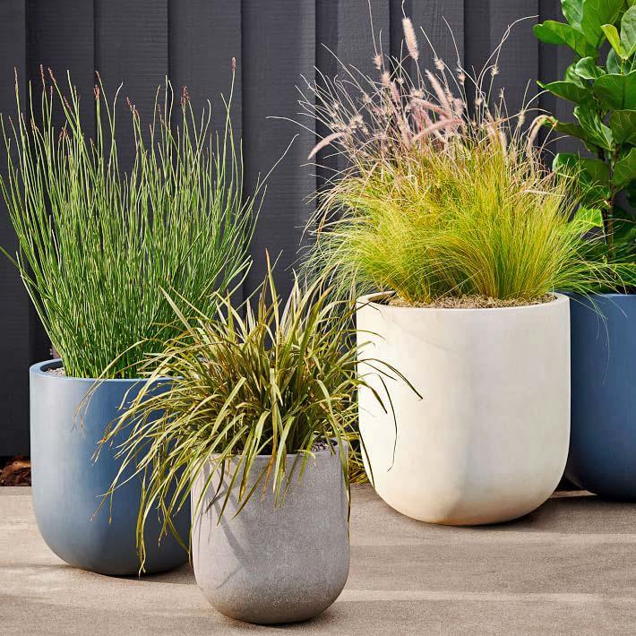 Best Places to Buy Concrete Planter Pots Online