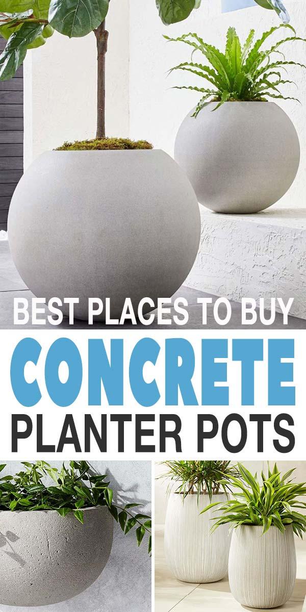 Concrete Planter Pots Online