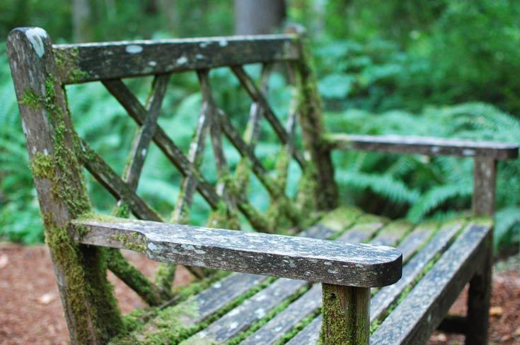 Miraculous Visiting The Bloedel Reserve Botanical Gardens The Garden Spiritservingveterans Wood Chair Design Ideas Spiritservingveteransorg