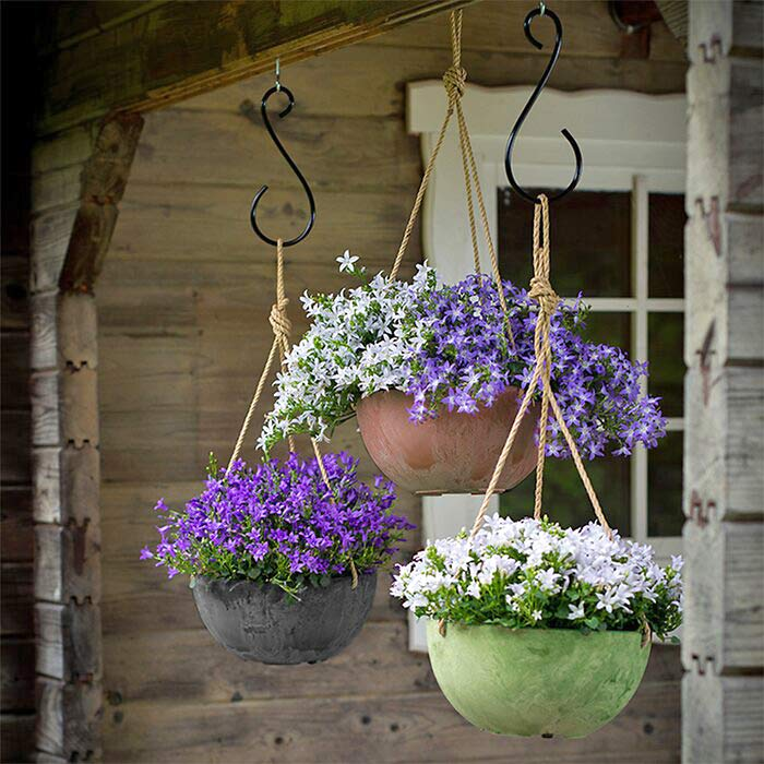 Hanging Flower Baskets : 5 Secrets the Pros Use