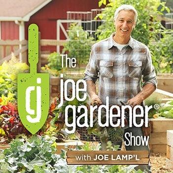 Best Gardening Podcasts for Every Garden Lover